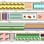 Gartendesign 2016