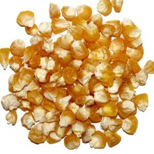 Zuckermais Golden Bantam Saatgut